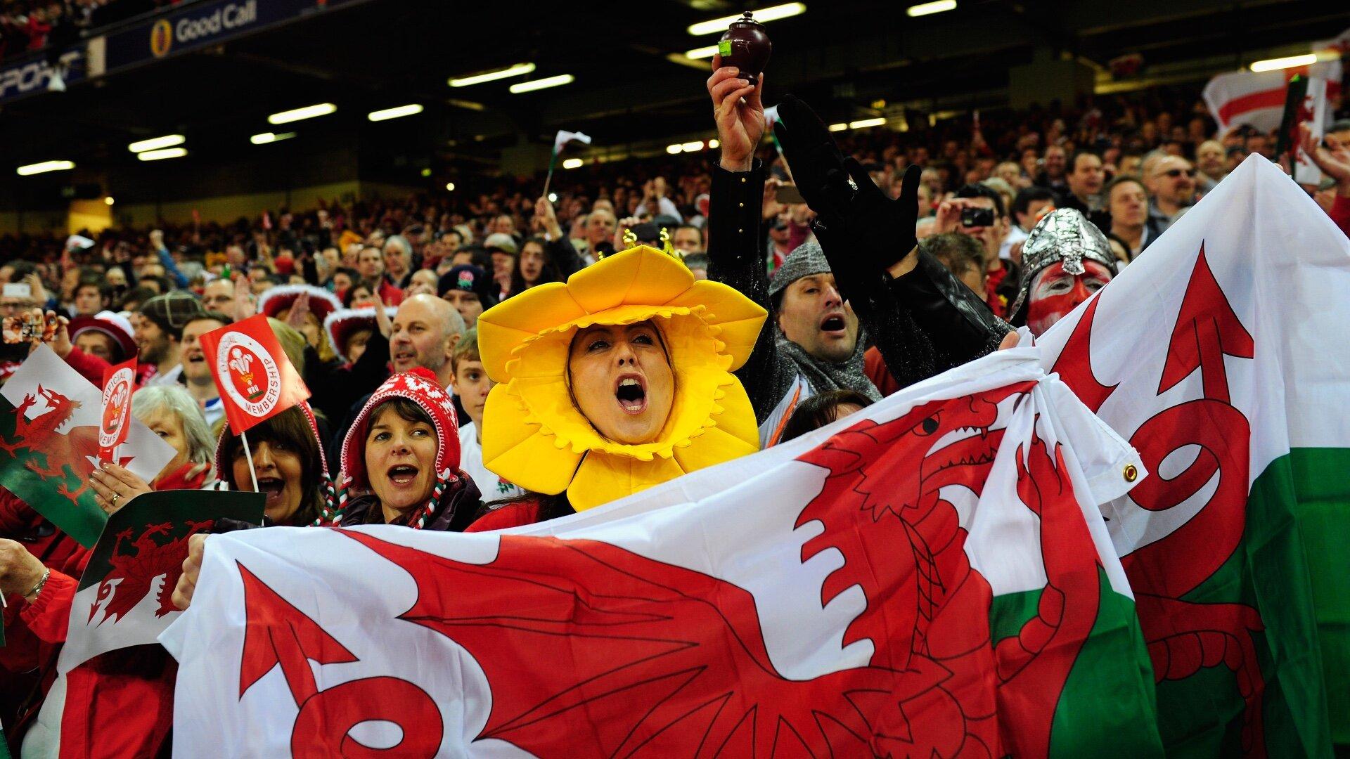 Wales fans enjoy win