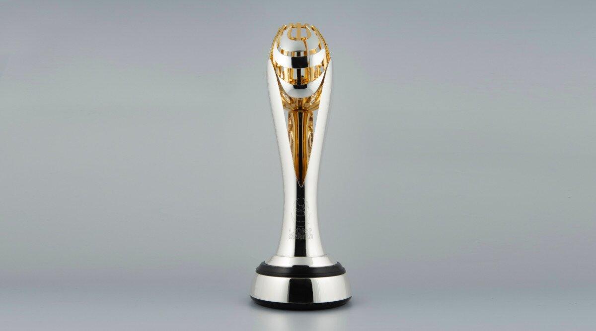 Lions Springboks trophy